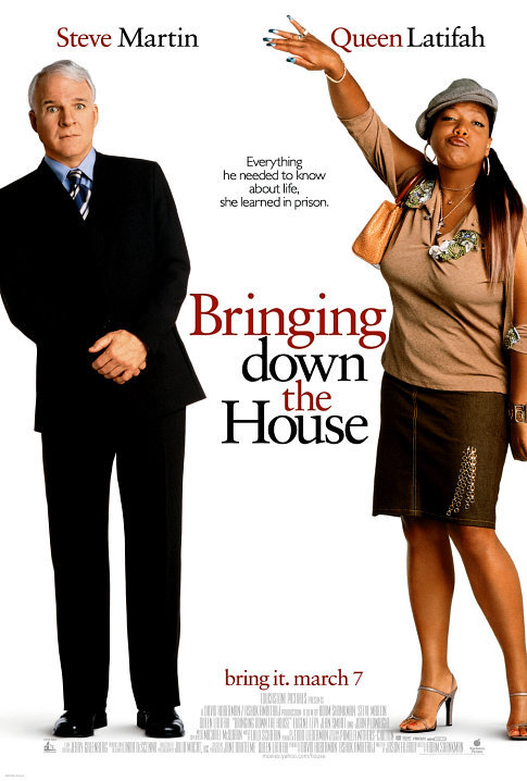 Bringing Down the House Poster